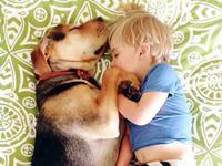 萌娃和狗狗风骚睡姿