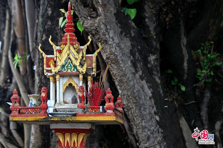 大榕树下的小祭坛