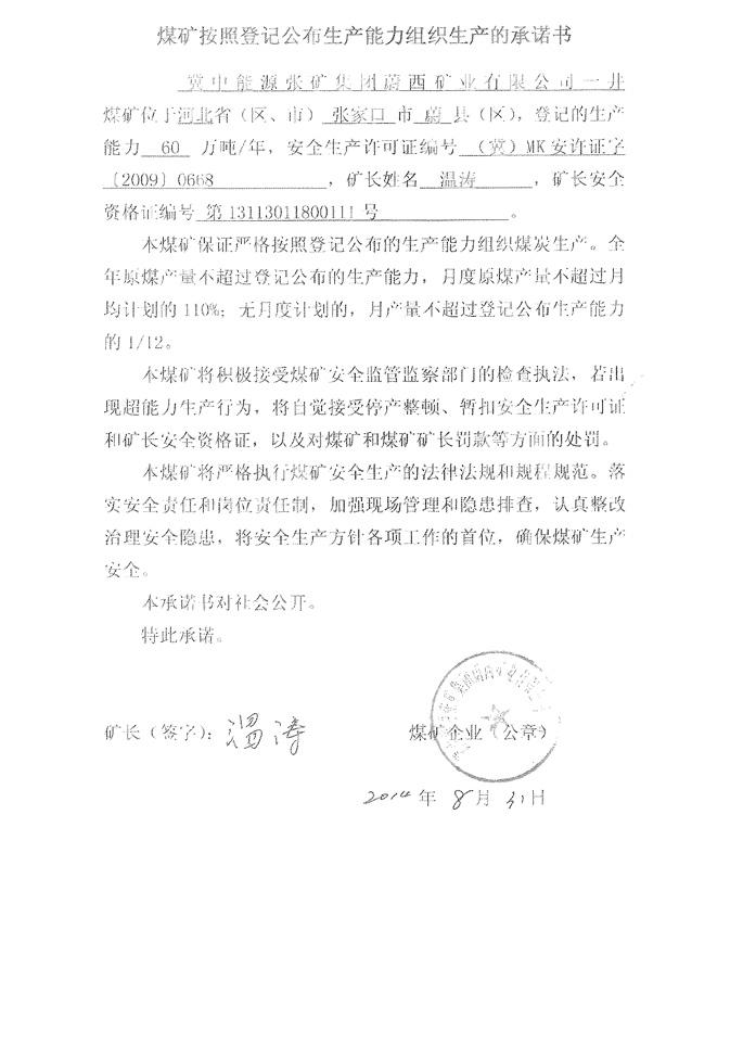 【集团党委班子成员承诺书】