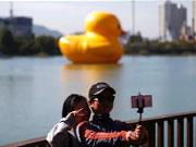 大黄鸭亮相首尔引围观