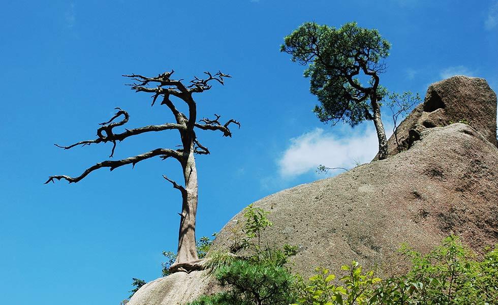 江西三清山 西太平洋邊緣最美花崗岩