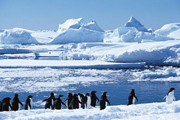 外媒 俄中 反对 美欧 南极海洋 保护区