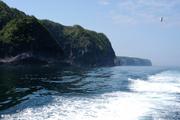 习近平 经略海洋 推动 海洋强国建设