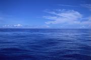 """中国海洋采矿船舶技术""""出海"""""""