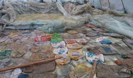 沈阳近郊荒地现神秘大坑 坑内藏数万斤'臭坑酸菜'
