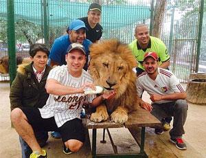 阿根廷动物园允许游客与雄狮零距离合影