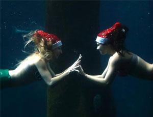 巴西水族馆圣诞表演:潜水员头戴圣诞帽扮'美人鱼'