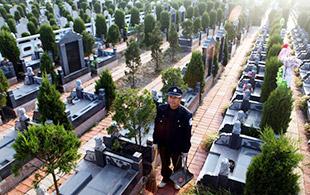 陵园守墓人的坚守:这是一份平常的工作