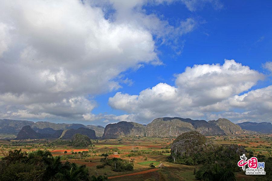 山丘的顶端稀疏地分布着耐旱的植物