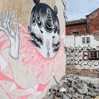 上海拆迁涂鸦走红 艺术家:撒一点忧伤的盐[组图]