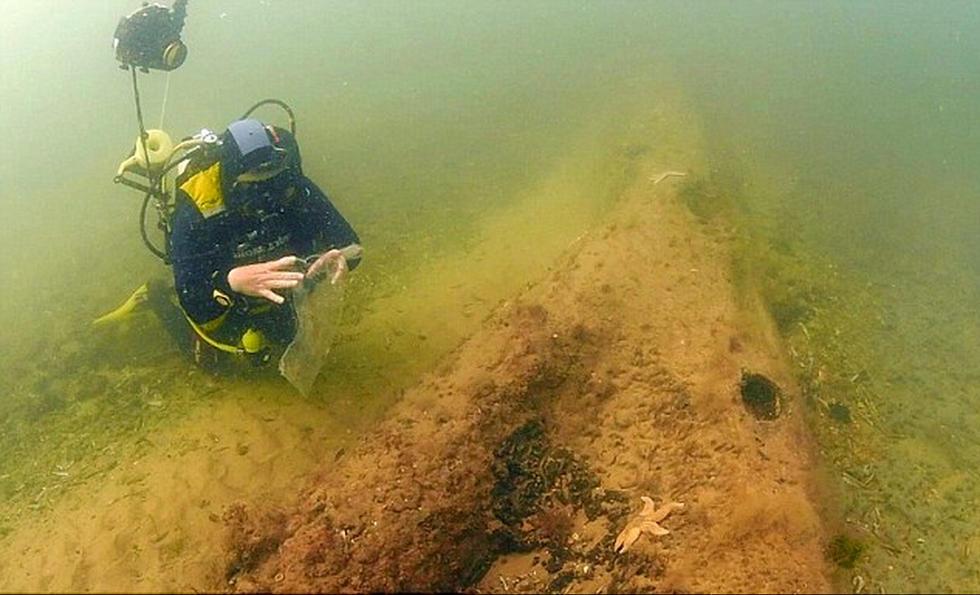 北海海底发现1万年前远古树林 生长于冰河世纪 - 海阔山遥 - .