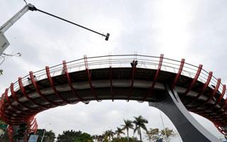 """厦门最文艺的天桥""""鱼桥""""投入使用"""