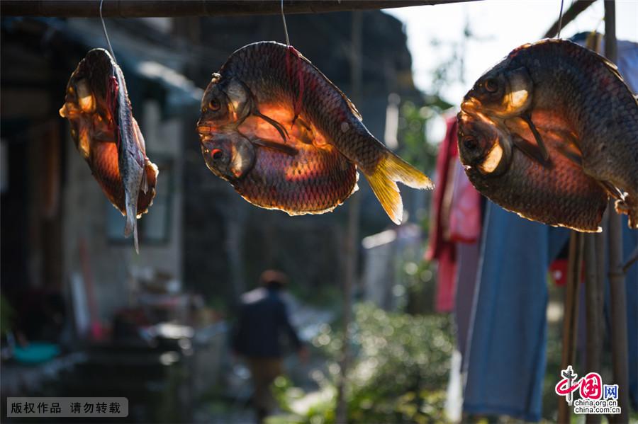 这腊味还少补了一道美味,就是鱼。同样的先得把鱼抹上盐,然后在太阳下晒干。中国网图片库 尹忠/摄