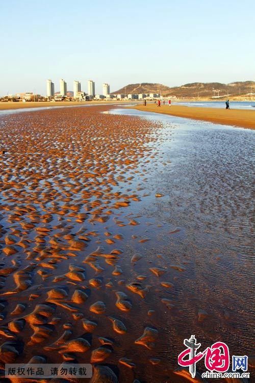 金沙滩位于山东半岛南端黄海之滨,青岛市黄岛区(青岛开发区)凤凰岛.