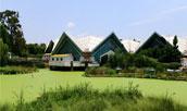 世界园艺博览会分类