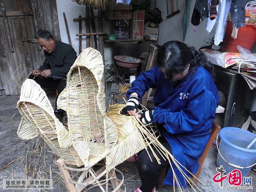 湖口草龙,以稻草为主要材料,辅之以竹木做支架,整条龙节段为单数,一般为9-21节,其编织工艺复杂精致,采用了编、织、插、嵌、镶、绕、缠、悬、挂、空、别、剔、镂、透等十多种工艺技巧。图为喻芳泽女儿喻远莉在精心编织草龙龙头。中国网图片库 洪永林/摄