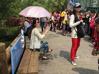 上海:锅炉郊游小学生一路为老师遮阳打伞小学学校v锅炉图片