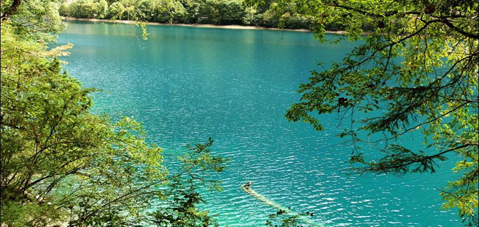 五月九寨沟:这个初夏遇见你的绿湖(图)