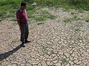 山东多地旱情持续