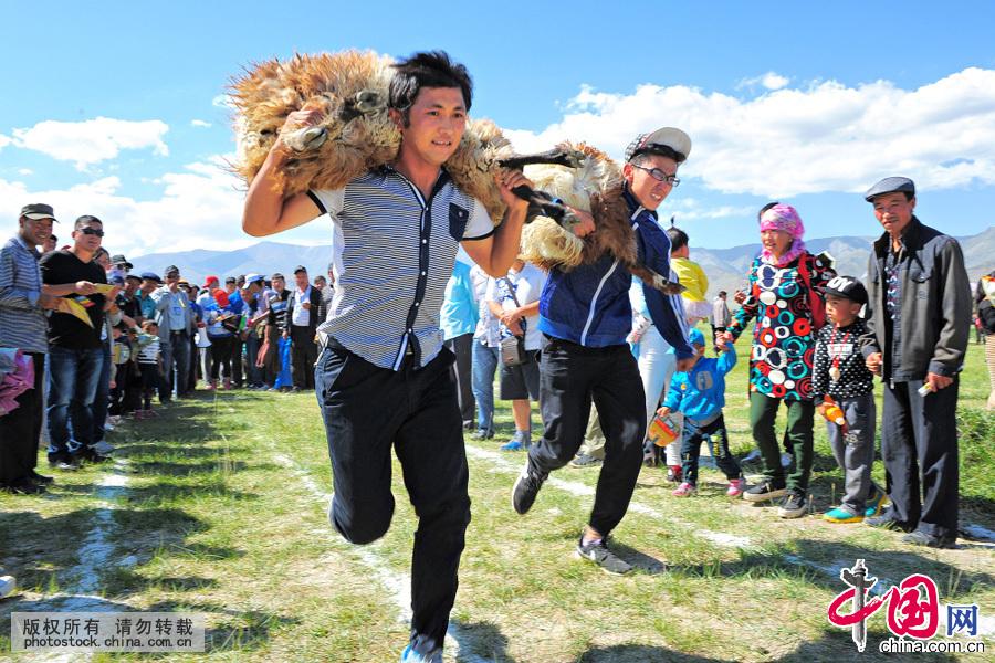 """八月的幻彩湖,汇水粉红,湖畔草色如茵,游人如织,新疆伊吾盐池镇一年一度的赛羊大会在这里举行。在赛羊会上,比赛内容有,牧民们精心将羊、马、牛、小骆驼打扮成""""美人""""的选美比赛,剪羊毛比赛、选种羊比赛、抱羊跑比赛,这些都是与牧民日常生活息息相关的活动"""