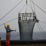 航次 8月 拖网 绞车 取样 甲板 中太平洋 浮球 涌浪 颗粒物