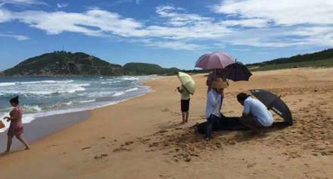 海豚生物导航系统紊乱迷路海边搁浅 村民自发救助