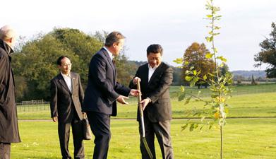 习近平同英国首相卡梅伦共同植友谊树