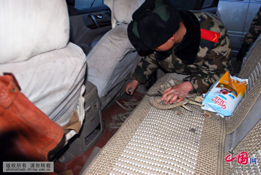 11月9日,边检站执勤官兵在车座底部查获黄羊角。中国网图片库 陆宝升摄