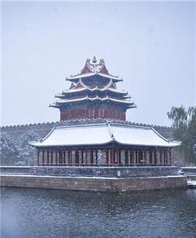 北京大雪纷飞 白雪镶红墙美不胜收