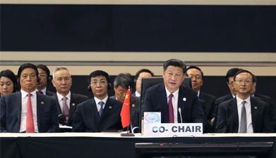 习近平主持约翰内斯堡峰会全体会