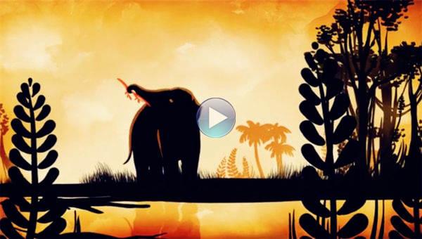 非洲象的生存状况令人担忧
