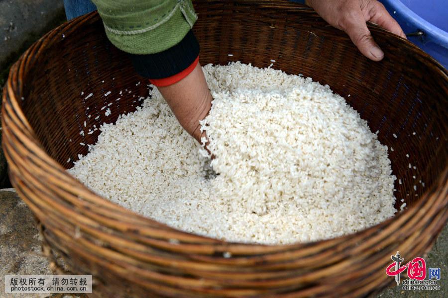 将上好的糯米淘洗干净,放在桶里用山泉水浸透。然后,放进木桶里用柴火蒸熟。中国网图片库 黄旭胡摄