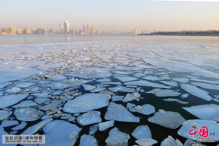 2016年1月26日清晨,受气温回升影响,青岛唐岛湾出现罕见大面积冰排景观。中国网图片库寒泊摄 近日,北方气温逐步回升,霸王级寒潮退去。2016年1月26日清晨,青岛唐岛湾出现罕见大面积冰排景观。 当日,青岛最低气温由寒潮来袭时的-15.1升至-4,最高气温3。随着气温的逐步回升,加之潮汐作用,唐岛湾内前几日寒潮过境时大面积结冰的冰面开始解冻开裂并随潮水轻微流动,出现了罕见的冰排景观。