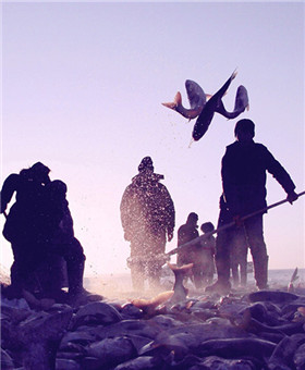 查干湖冬捕 冰雪渔猎文化的遗存
