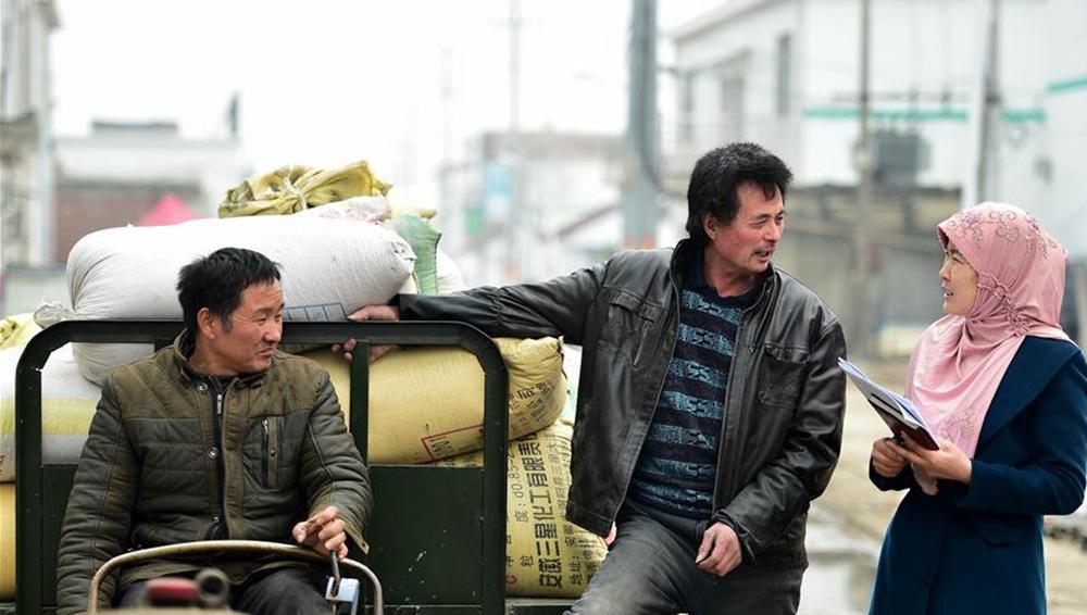 """刘琴代表:""""养牛""""代表为农民代言"""