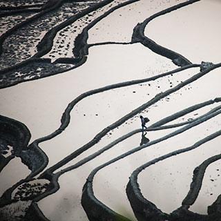 世界遗产哈尼梯田:神奇壮丽的大地雕塑[组图]