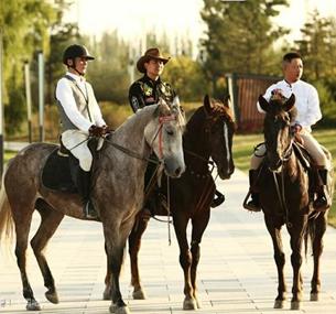 陕西省马术协会正式成立