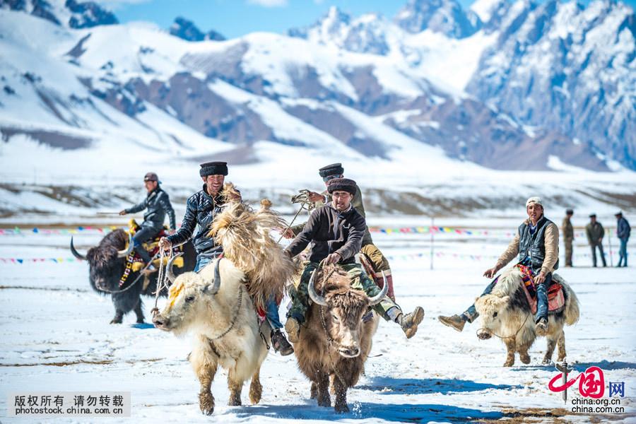 牦牛叼羊是新疆帕米尔高原海拔4000米左右地区举行的一项特殊的体育竞技项目。帕米尔高原海拔4000米,居住在这里的,90%是塔吉克族。在这近半年时间都是大雪封山的地区,每逢传统节日或举办婚礼,仍然有叼羊比赛。