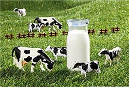 中国食品辟谣联盟公布十大乳业谣言