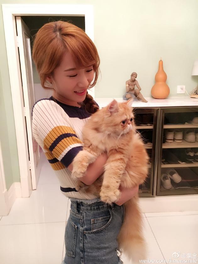 李念抱猫爱不释手 网友:我还以为是