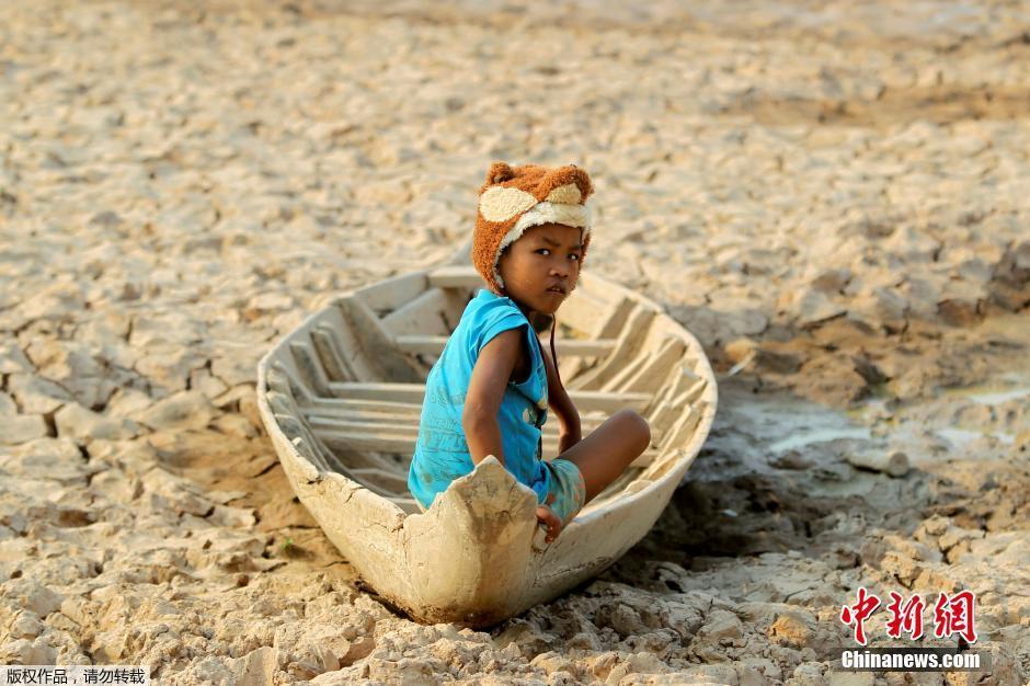 柬埔寨遭遇干旱 河水干涸鱼被晒成鱼干(组图)
