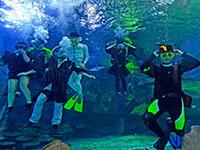 """武汉大学生水下拍摄""""高难度毕业照""""[组图]"""
