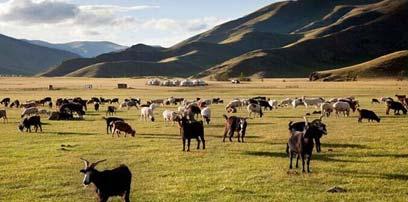 蒙古国十大不可错过景色 领略广袤草原