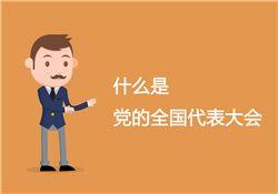 """什么是""""中国共产党全国代表大会"""""""