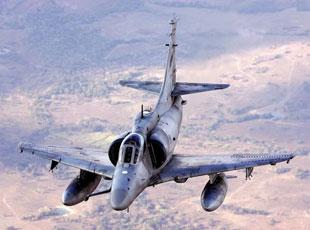 """一起來看""""戰機動物園"""":盤點動物綽號軍機"""