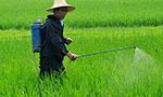 农业部:遵循绿色发展 加强农药管理工作