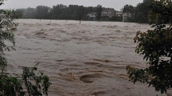 湖北举水河流域武汉新洲段发生溃口