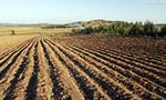 农业部:《耕地质量调查监测与评价办法》发布