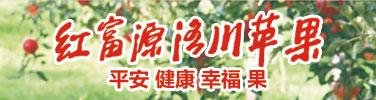 中国苹果数洛川 洛川苹果——红富源