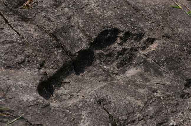 """贵州从江现神秘""""巨人脚印"""" 长57cm宽20cm位置隐秘"""